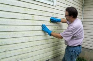 Replacing Your Home's Siding
